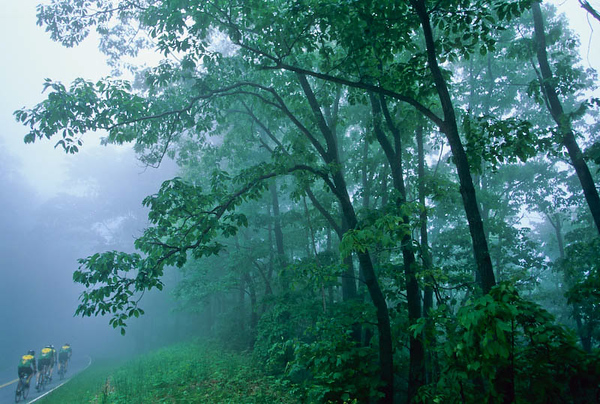 "Blue Ridge Parkway & Skyline Drive - Cyclists - ***See ""Blue Ridge Parkway"" in this section"