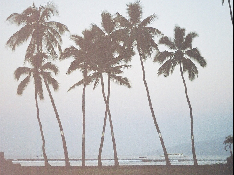 Hawaii-245.jpg