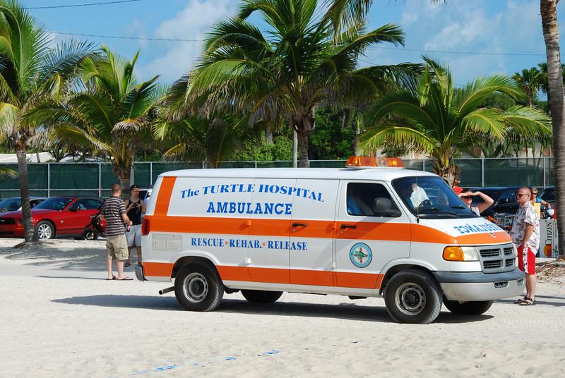Turtle Hospital Ambulance