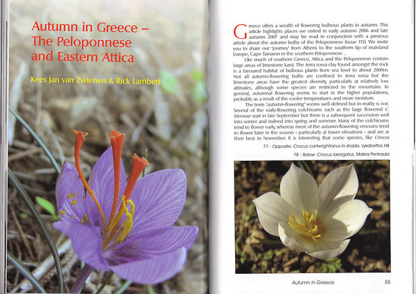 Autumn in Greece - The Peloponnese and Eastern Attica, Kees Jan van Zwienen and Rick Lambert, January 2009