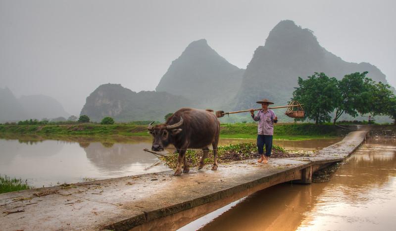 2012 china fisherman & old man w- cow-3.jpg
