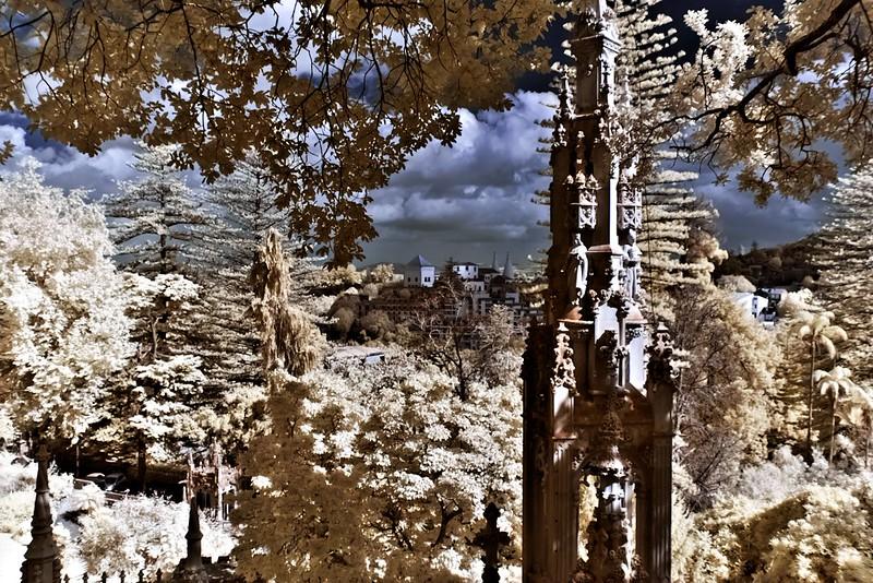 Podobný záběr v infračervené