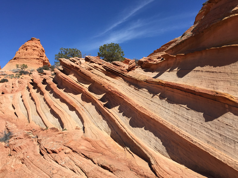 Coyote Buttes Paw Hole - IMG_1028 - KW - KCOT.jpg