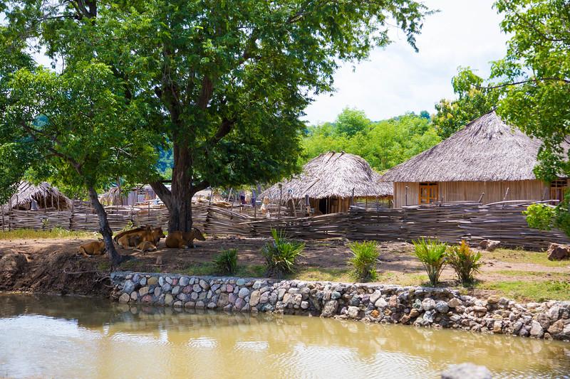 Timor Leste-242.jpg