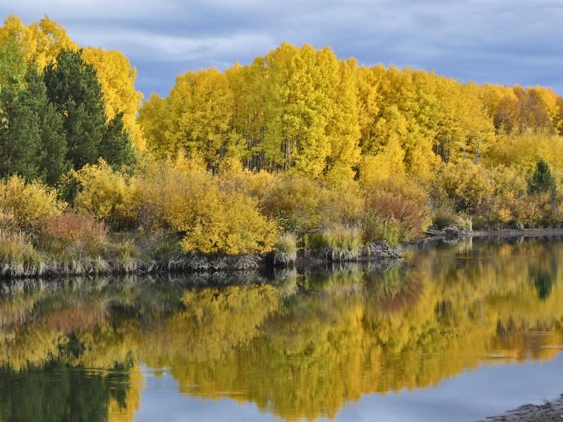 autumn08-030_40371997491_o.jpg