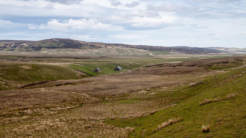 Lunedale landscape