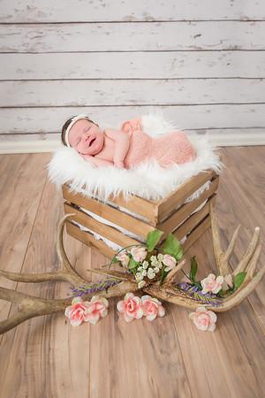 Baby K.Diede