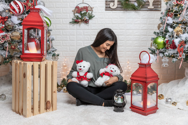 12.18.19 - Vanessa's Christmas Photo Session 2019 - 39.jpg