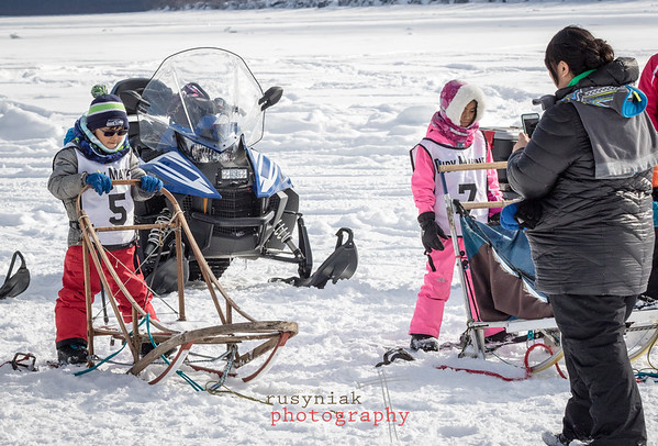 Tanana Dog Races March 2017
