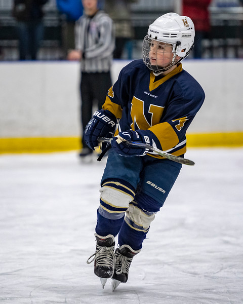 2019-02-03-Ryan-Naughton-Hockey-18.jpg