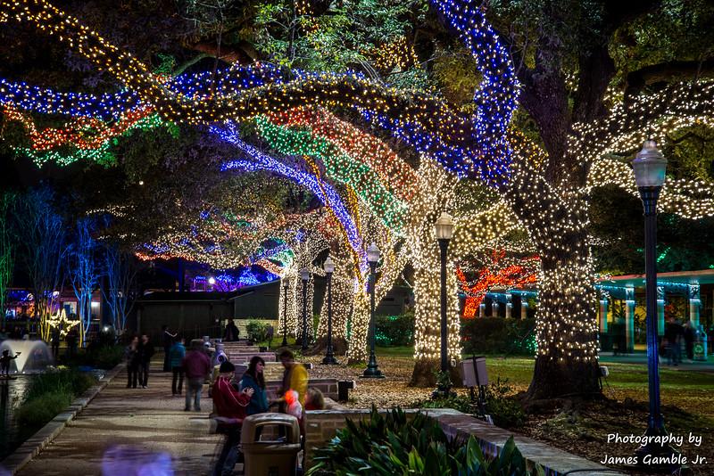 Houston-Zoo-Lights-2935.jpg