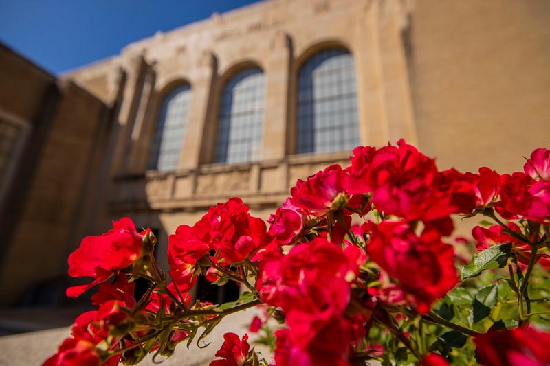 Waco Hall - flowers, Spring
