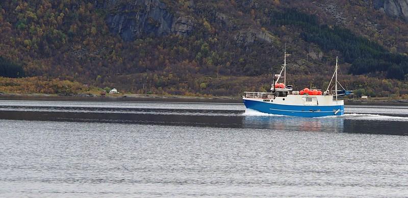 Cruise to Trollfjorden (15).JPG