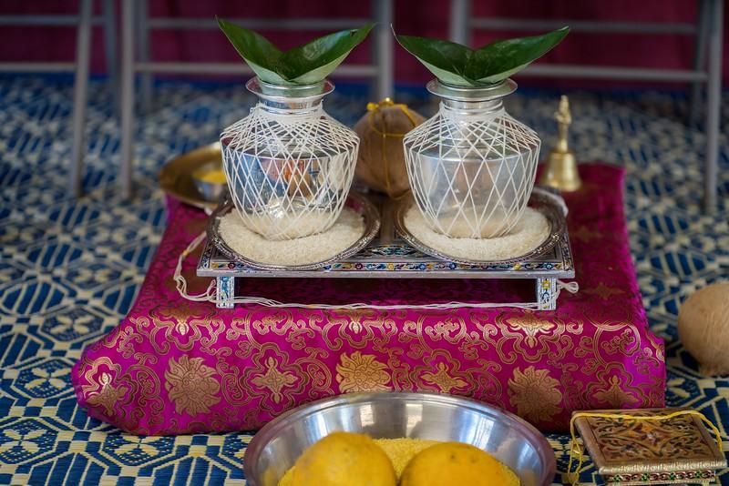 Erin_Harsha_Hindu_Wedding-2.jpg