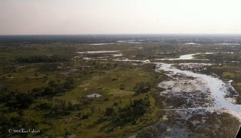 Botswana LandscapeK-4.jpg