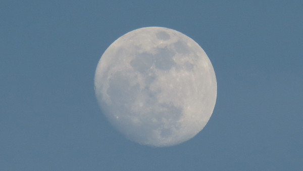 January 23 - 24:  More moon pics .  .  .