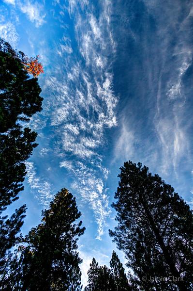 LaPine State Park, Oregon