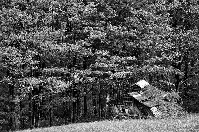 Western New York USA 2006