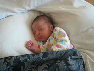 Abigail - The first 6 weeks