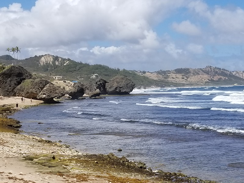 Barbados (32).jpg
