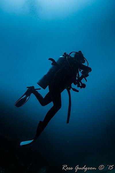 Underwater Photo Course - 19/20 December 2015