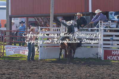 PERF SADDLE BRONC 06-20-15