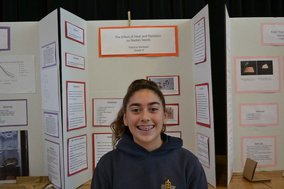 St. Andrew School Hosts Annual Science Fair