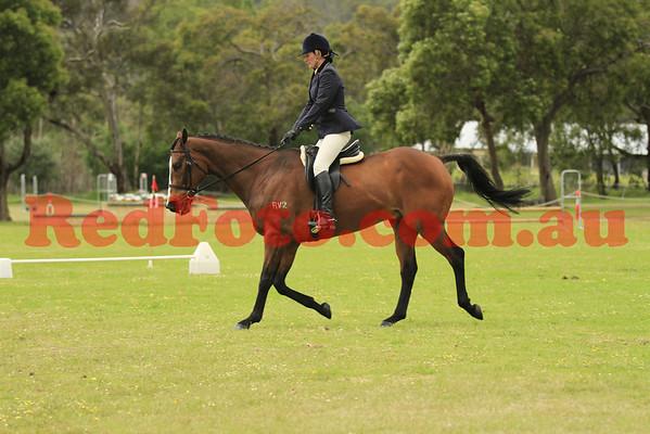 2011 09 25 Orange Grove Pre-Royal Show Ridden