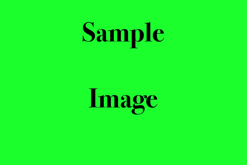 Sample Image copy 2.jpg
