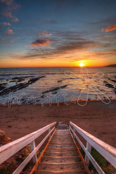 Shell Beach_51