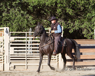 Western Riding Clinic 2013