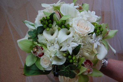 Callas, greens orchids, stephanotis with pearls, beans roses-  $165