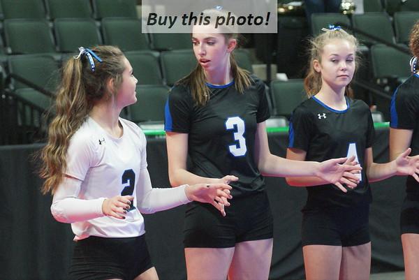 Volleyball state quarterfinals 11-08
