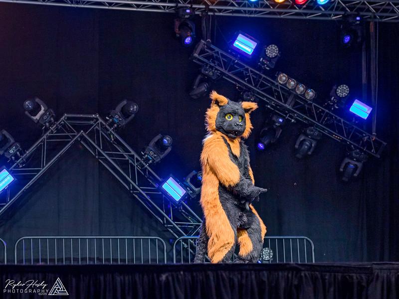 MFF 2018 Dance Comp-473.jpg