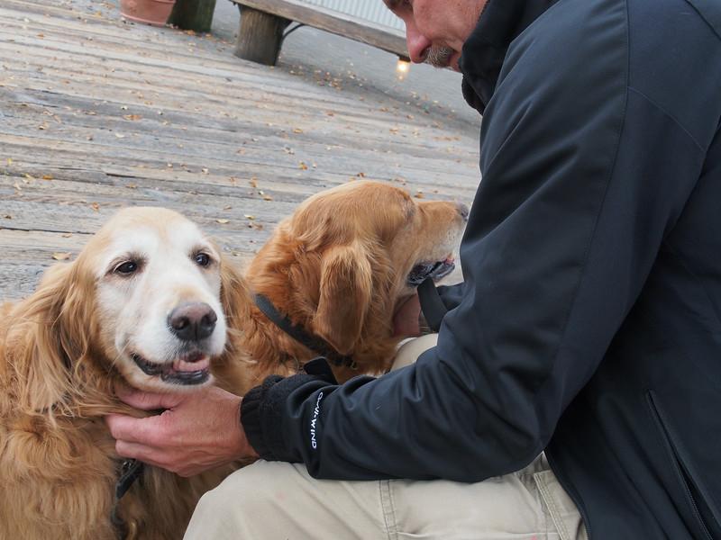Oct. 19/13 - Dogs enjoying the entertainment