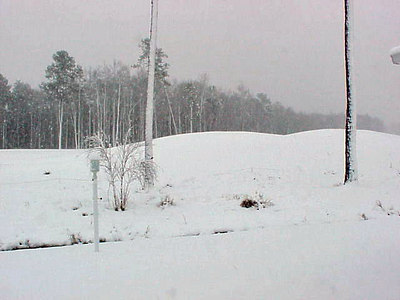 01 It Snows in South Carolina Too