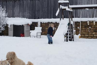 Snow in Texas - February 2010
