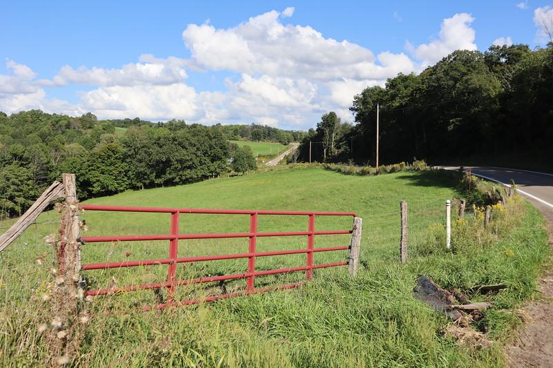 Near Peoli in Washington Township