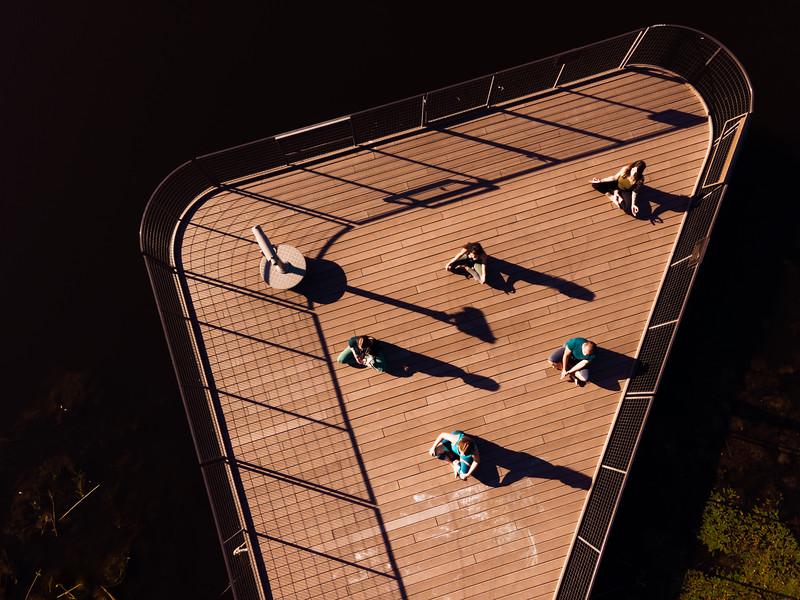 Online Yoga - Lincoln Park-1347.JPG