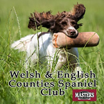 Welsh and English Counties Spaniel Club