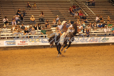 Saddle Bronc Riging Tues 15th