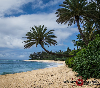 Oahu-Hawaii2013