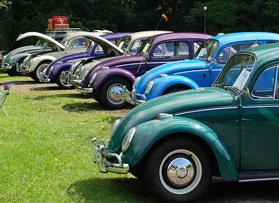 2008 VW Show