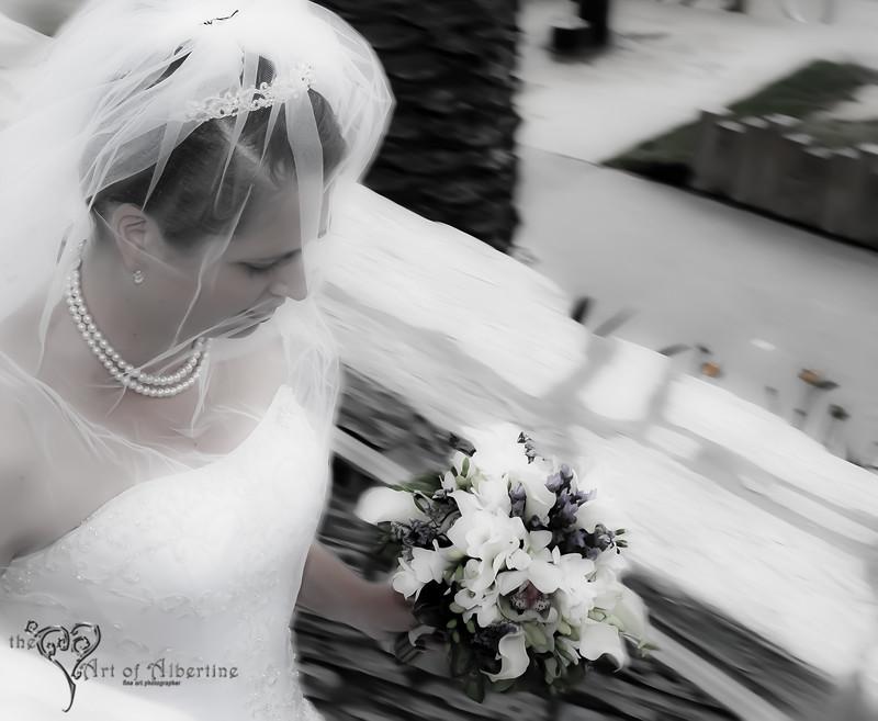 Laura & Sean Wedding-2250.jpg