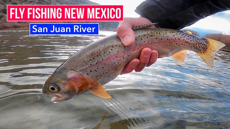 San Juan River Thumb v2.jpg