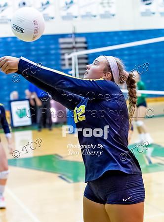 2019 - Varsity Volleyball