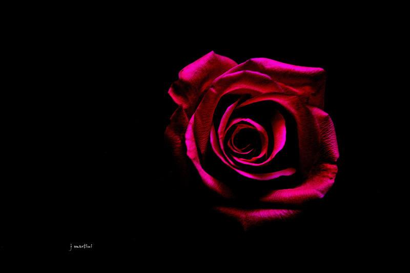love's core 2-14-2012.jpg
