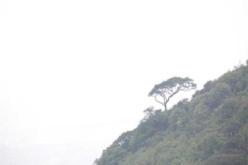 Kenya.Card3.02.2014 451