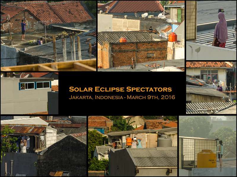 Solar Eclipse Spectators