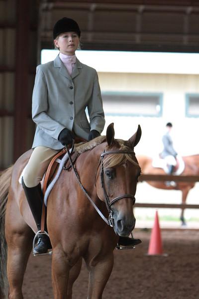 Hunt Seat Equitation All Classes